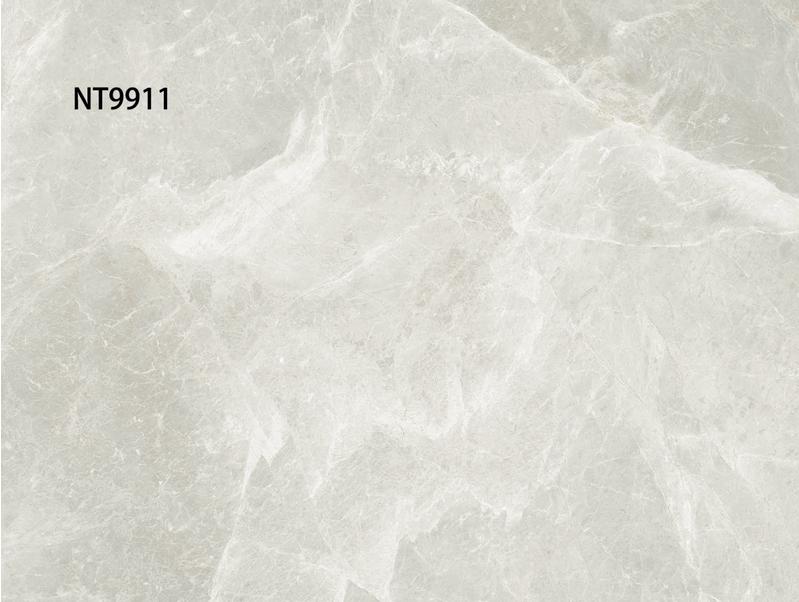 佛山瓷砖品牌ZR8T60001